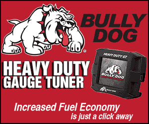 BullyDog_300x250.